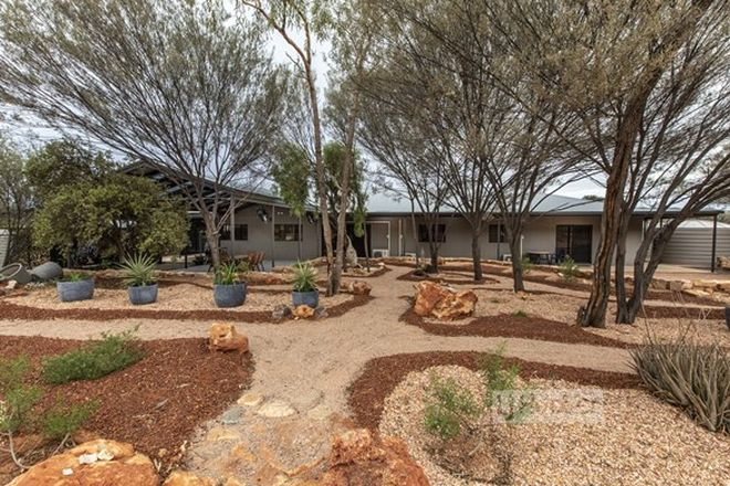Picture of 37 Lillecrapp Road, ILPARPA NT 0873