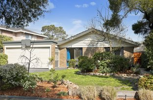 6 Lord Avenue, Dingley Village VIC 3172