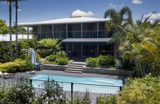 Picture of 55 Murphys Creek Road, Blue Mountain Heights QLD 4350