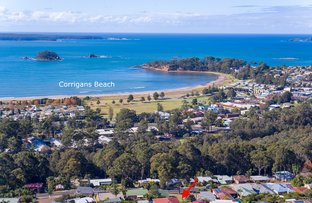 Picture of 32 Catalina Drive, Catalina NSW 2536