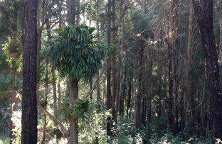 Lot 63 Locketts Crossing Road, Coolongolook NSW 2423
