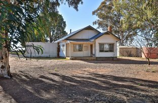 Picture of 241 Cocklin Avenue, Red Cliffs VIC 3496