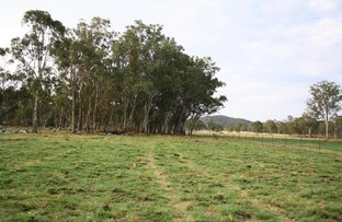 Picture of 245 Geyers Road, Tenterfield NSW 2372