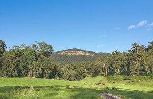 Picture of Lot 48 Mill Lane, Quorrobolong NSW 2325