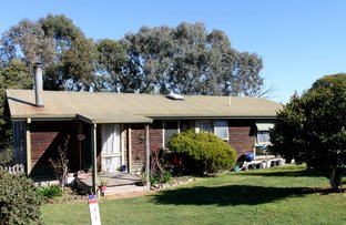 Picture of 62 Myrtle Street, Alexandra VIC 3714