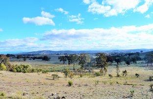 230 Birchmans Grove, Wamboin NSW 2620