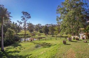 100 Wilman Road, Round Mountain NSW 2484