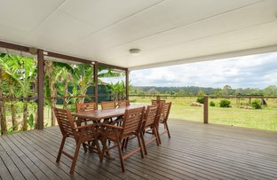 Picture of 288 Blowers Road, Munna Creek QLD 4570