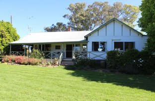 Picture of 1 Brooklyn, Gulgong NSW 2852