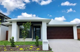 Picture of 13 Butterleaf Cres, Pimpama QLD 4209