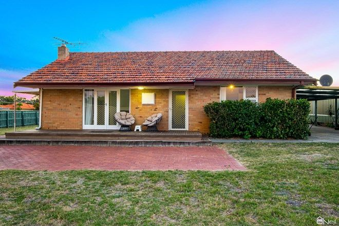 Picture of 14 Piesse Place, SEVILLE GROVE WA 6112