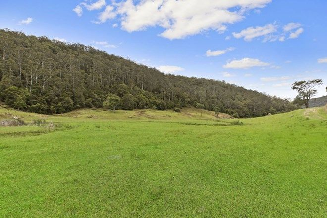 Picture of Lot A - 130 Spring Gully Lane, CEDAR BRUSH CREEK NSW 2259