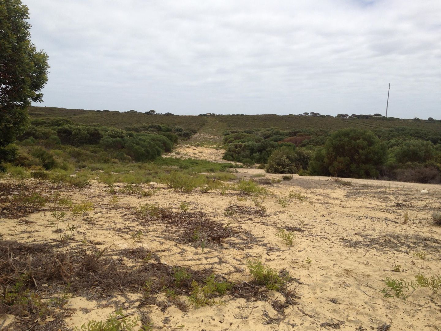 Lot 410 Jurien Bay Vista, Jurien Bay WA 6516, Image 0
