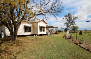Picture of 2239 Adams Scrub Road, Warialda Rail NSW 2402