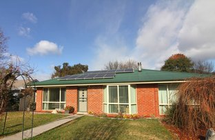 Picture of 9 Norman Court, Bright VIC 3741