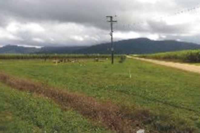 Picture of 856 Hawkins Creek Road, HAWKINS CREEK QLD 4850