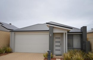 Picture of 29 Benalla Way, Lakelands WA 6180