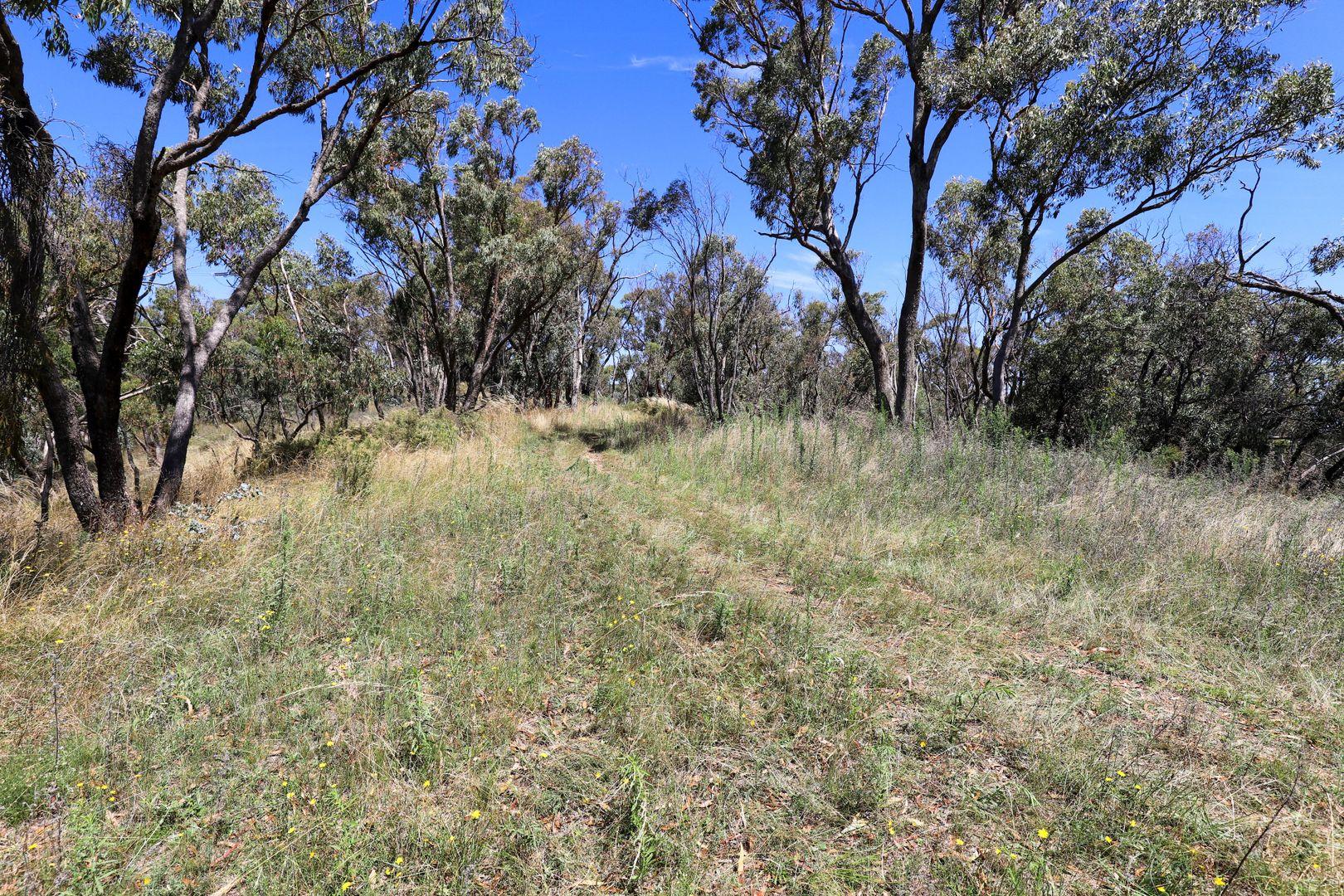 960 Hazelgrove Road Hazelgrove, Oberon NSW 2787, Image 1