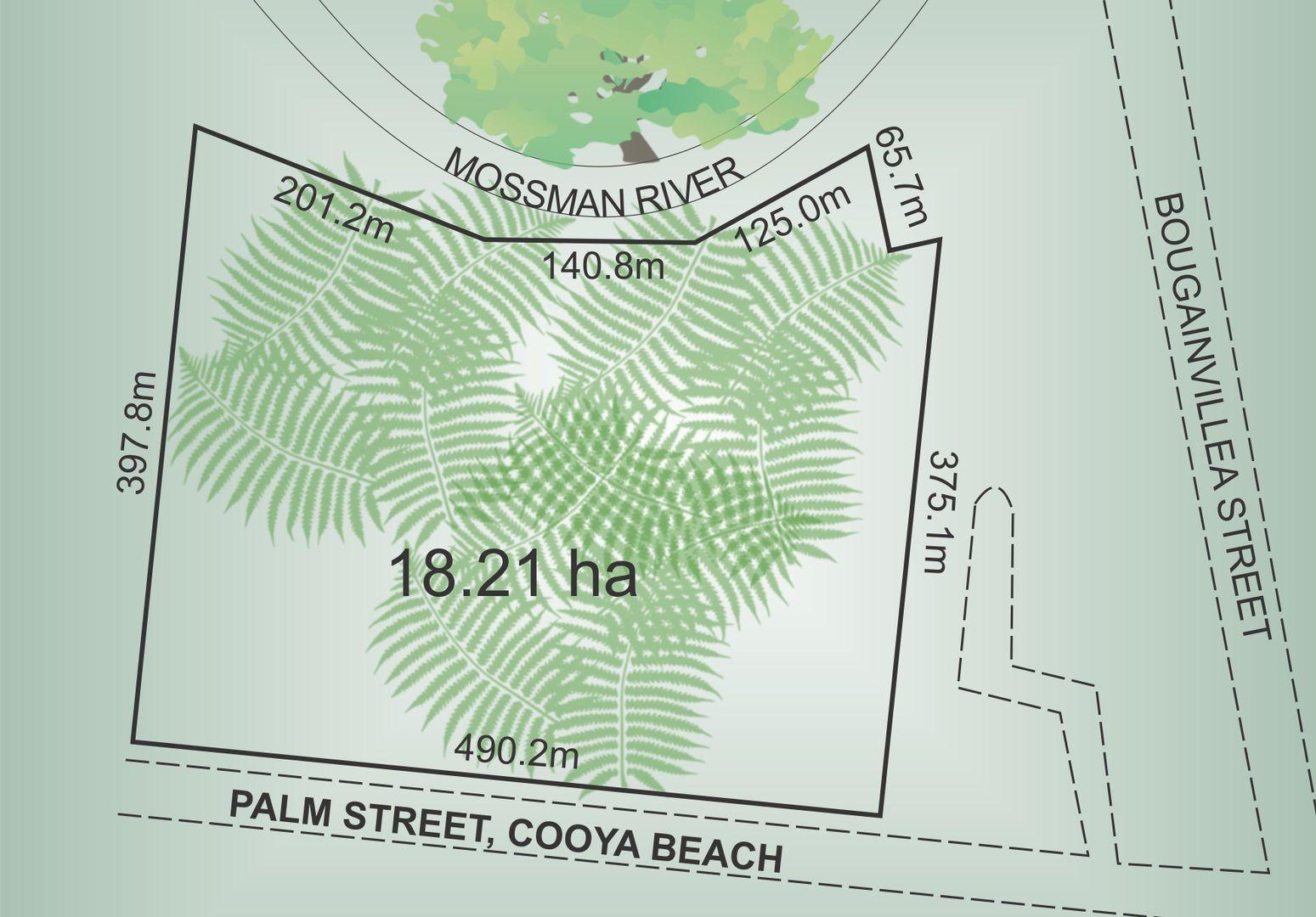 Lot 12 Palm Street, Cooya Beach QLD 4873, Image 1