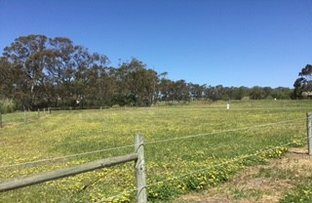 Picture of Lot 744 Truro Road, Moculta SA 5353