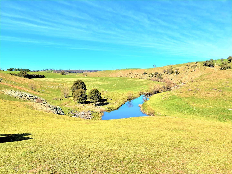 Lot 115/121 Blue Hill Road, Taralga NSW 2580, Image 1