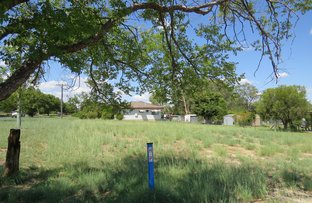Picture of 29 East Street, Warialda NSW 2402