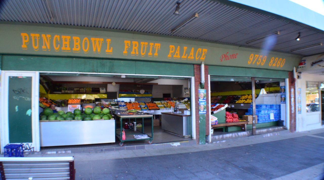 705 PUNCHBOWL RD, Punchbowl NSW 2196, Image 0
