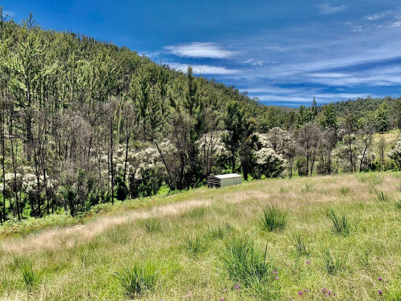 267 Wallabadah Valley Road, Laguna NSW 2325, Image 2