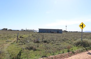 Picture of 81 ANNIE WATT ROAD, Port Wakefield SA 5550
