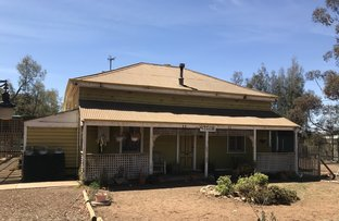 Picture of 8403 Thiele Highway, Bower SA 5374