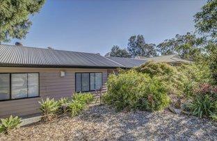 59 Birdwood Avenue, Winmalee NSW 2777