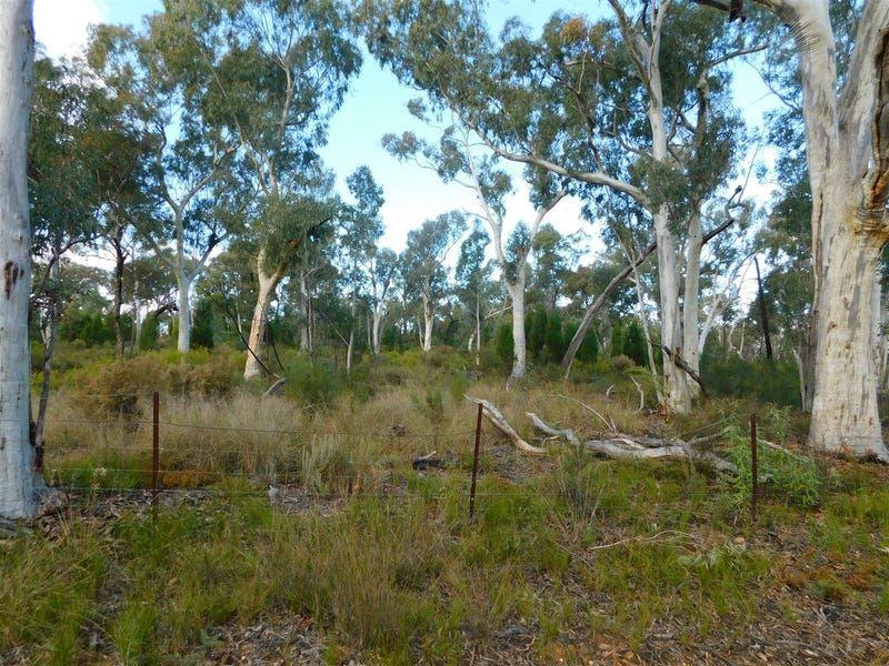 4166 Baradine Road, Coonabarabran NSW 2357, Image 0