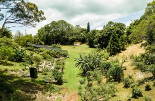 Picture of 52 Main Street, Montville QLD 4560