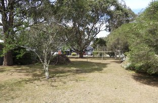 Picture of 18 Seventh Parade, Raymond Island VIC 3880