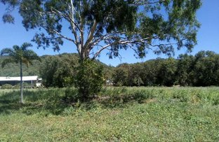 Picture of 16  Dolphin Court, Horseshoe Bay QLD 4819