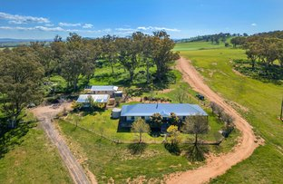 Picture of Cowra NSW 2794