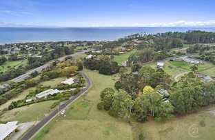 Picture of 3 Braddons Lookout Road, Leith TAS 7315