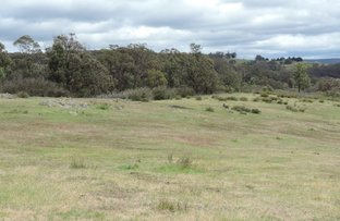 Picture of Lot 76 Mares Forest Road, Wombeyan Caves NSW 2580