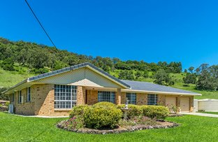 Picture of 166 Keerong Rd, Blakebrook NSW 2480