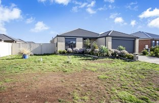 Picture of 5 Borrowdale Road, Melton West VIC 3337