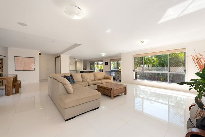 Picture of 95 Ridge Street, GREENSLOPES QLD 4120