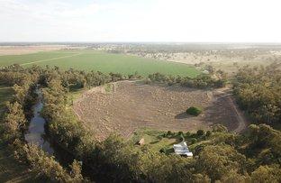 Picture of 'Yuronah', 1389 Wambianna Road, Warren NSW 2824