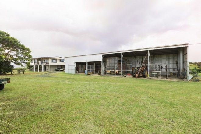 Picture of 263 Number Six Branch Road, Sth Johnstone, NO 6 BRANCH QLD 4859