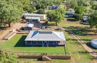 Picture of 12 Packham Dr Manildra, Orange NSW 2800