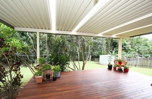 Picture of 4 Tree Street, Murwillumbah NSW 2484