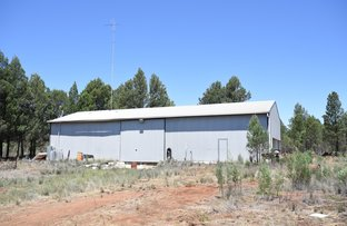 Picture of Ascot Park Road, Dubbo NSW 2830