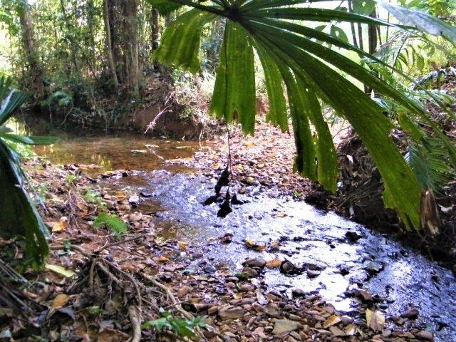 Bombeeta QLD 4871, Image 0