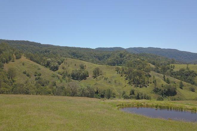 Picture of 545 Masseys Creek Road, Eccleston Via, EAST GRESFORD NSW 2311