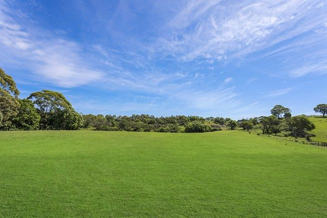 Picture of 79 Fig Hill Lane, DUNMORE NSW 2529