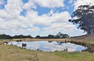 Picture of 88c Kirriford, Nerriga NSW 2622